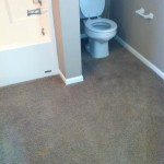 Bathroom with carpet installed